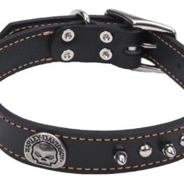 1 LEATHER SPIKE WILLIE G COLLAR