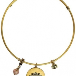 GOLD TONE LOVE H-D CHARM BANGLE